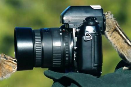 如何选择一家合适的企业宣传片拍摄公司?